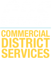 CDS logo vertical