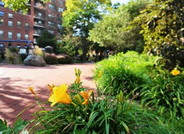 Nathanael Greene Park Flower Garden